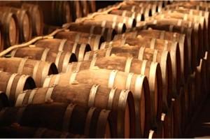 Oak Barrels Cellar