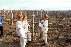 Bulgarian wine company gallery 4